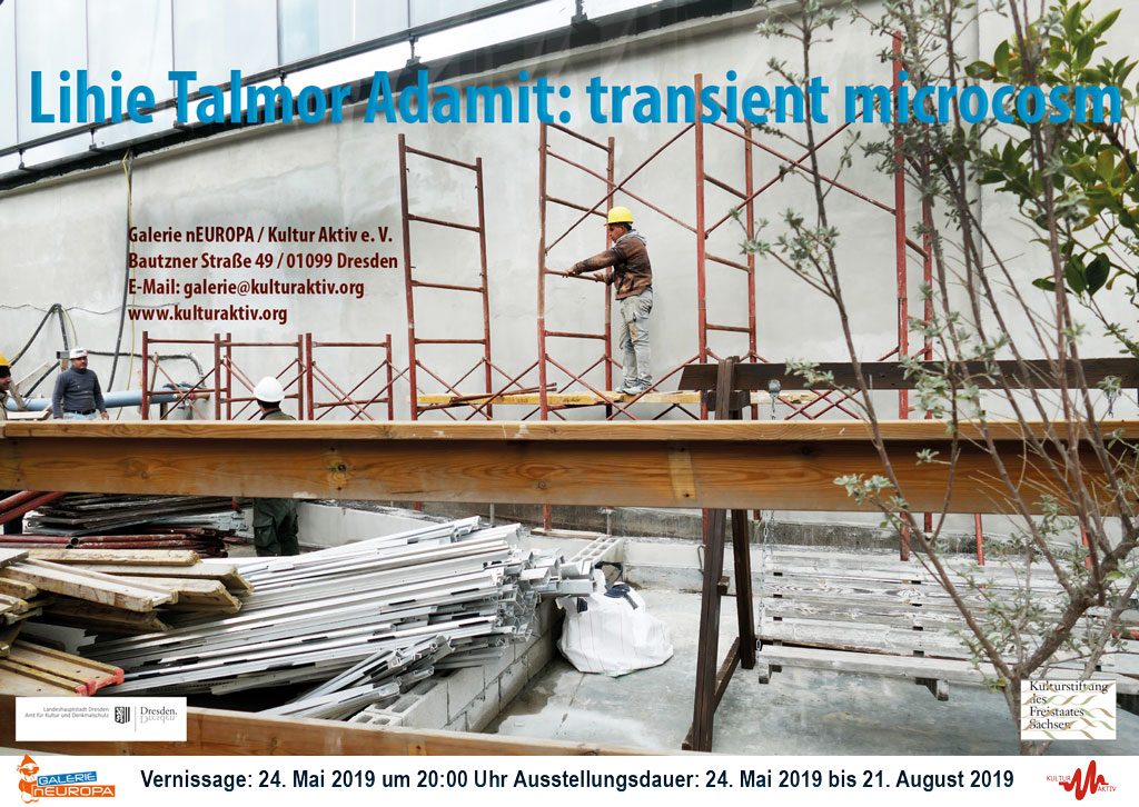 Lihie Talmor Adamit - transient microcosm