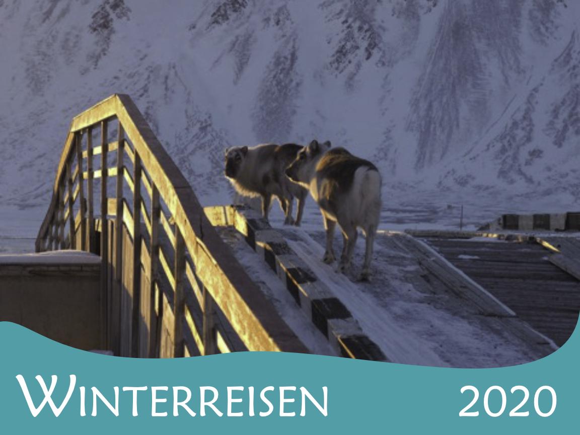 Andreas Schieck: Spitzbergen